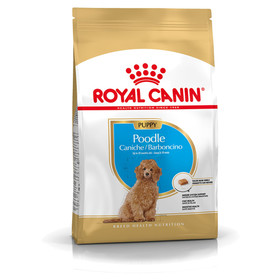(12,78 EUR/kg) Royal Canin Breed Pudel Puppy 500 g